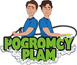 Pogromcy Plam